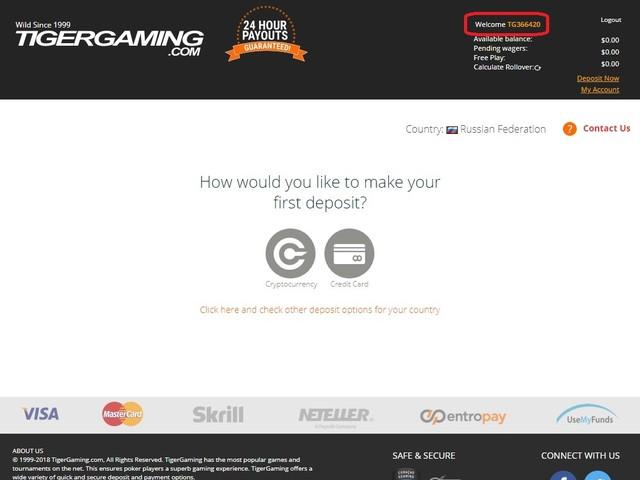 tigergaming client